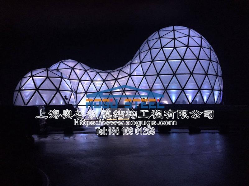 国外ETFE透明膜结构工程展示图片产品演示图2